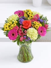 Colour Your Day with Joy Vase