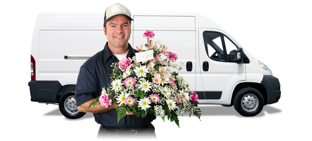 Elgin Flower Delivery