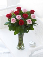 Elegant Pink and Red Rose Vase