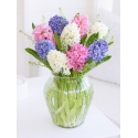 Dreamy Hyacinth Vase